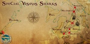 Diving liveaboard philippines destination visayas sharks