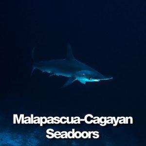Seadoors produit malapascua cagayan