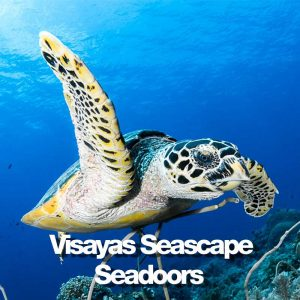 Seadoors produit visayas seascape