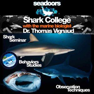 seadoors produit shark college
