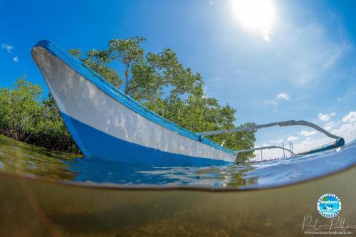 Shark Fin Bay, Palawan, Philippines by Pierlo Pablo
